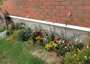 建物沿いの花壇スペース