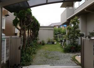 施工前のお庭の様子です